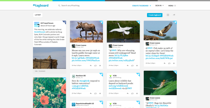 #WildlifeWeek on Tagboard